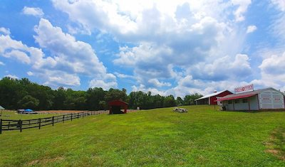 Montpelier Farms Field and Buildings