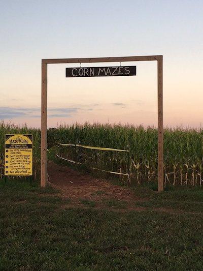 Winterbrook Farms Corn Maze